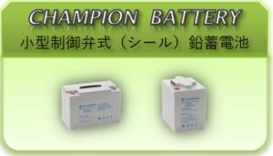 CHAMPION_BATTERY